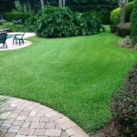 Lawn Care for Beautiful Yard