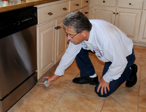 Home Pest Control in The Villages FL